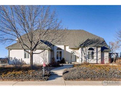 Longmont Single Family Home For Sale: 12987 Hillcrest Dr