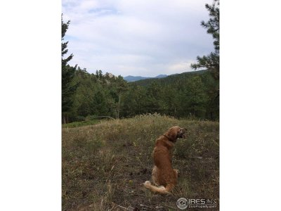Boulder Residential Lots & Land For Sale: Old Townsite Rd