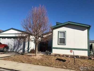 Longmont Single Family Home For Sale: 11304 Big Bnd #147