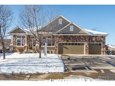 Mead Single Family Home For Sale: 16855 Howlett Pl