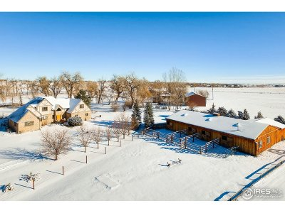 Berthoud Single Family Home For Sale: 3714 W County Road 2