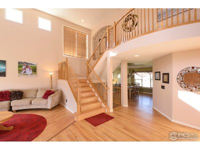 Broomfield Single Family Home For Sale: 14015 Turnberry Ct