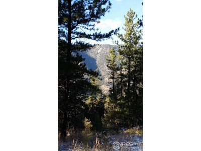 Lyons Residential Lots & Land For Sale: 721 Estes Park Estates Dr