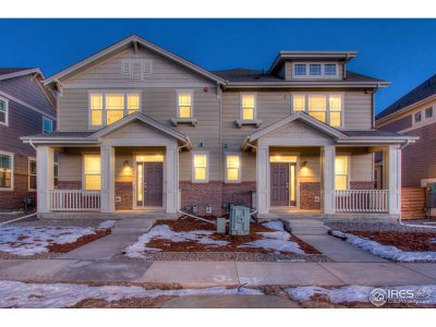 Larimer County Condo/Townhouse For Sale: 446 Zeppelin Way