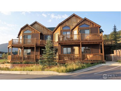 Estes Park Condo/Townhouse For Sale: 2625 Marys Lake Rd #41B