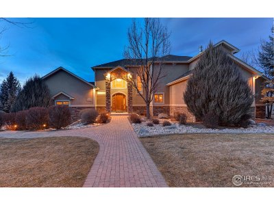 Loveland Single Family Home For Sale: 703 Rossum Dr