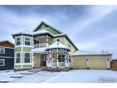 Erie Single Family Home For Sale: 1471 Allen Ave