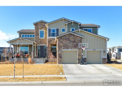 Single Family Home For Sale: 6203 Swainsons Hawk Pl