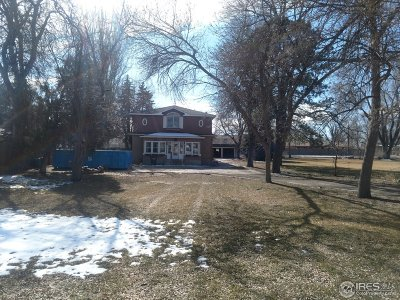 Weld County Single Family Home Active-Backup: 709 Elm St