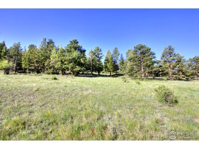 Estes Park Residential Lots & Land For Sale: Cherokee Ct