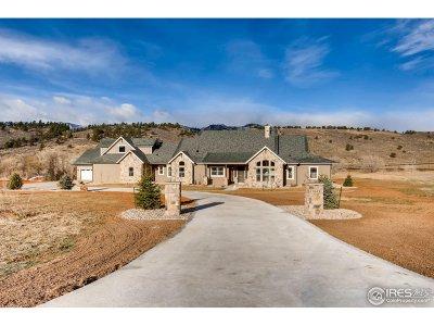 Single Family Home For Sale: 9645 Buckhorn Ridge Way