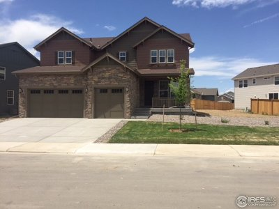 Thornton Single Family Home For Sale: 15937 Milwaukee St