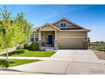 Longmont Single Family Home For Sale: 1303 Armstrong Dr