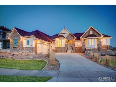 Weld County Single Family Home For Sale: 2131 Driver Ln