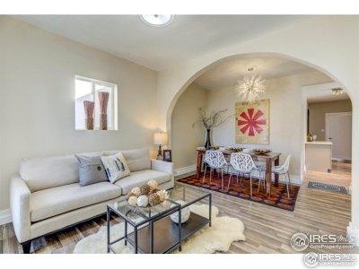 Denver Single Family Home For Sale: 604 Inca St