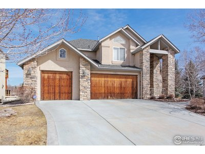 Broomfield Single Family Home For Sale: 3981 Troon Cir