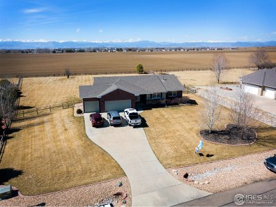 Longmont Single Family Home For Sale: 1842 Meadow Vale Rd