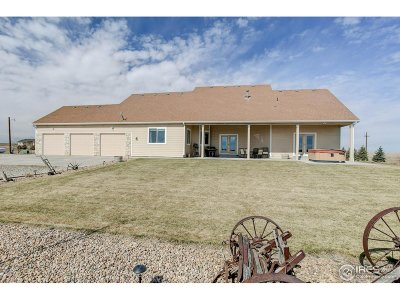 Keenesburg Single Family Home For Sale: 31440 County Road 18