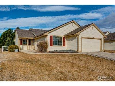 Larimer County Single Family Home For Sale: 4063 Harrington Ct