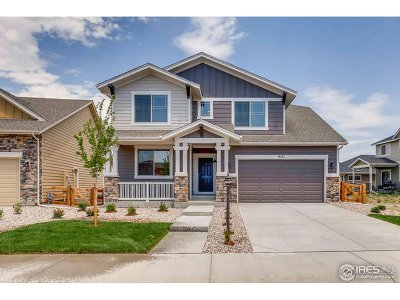 Loveland Single Family Home For Sale: 4121 Mandall Lakes Dr