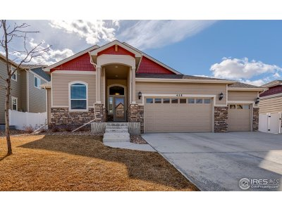 Loveland Single Family Home For Sale: 458 Osceola Dr