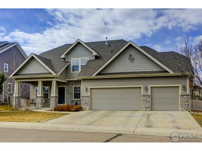 Frederick Single Family Home For Sale: 8799 Mustang Dr