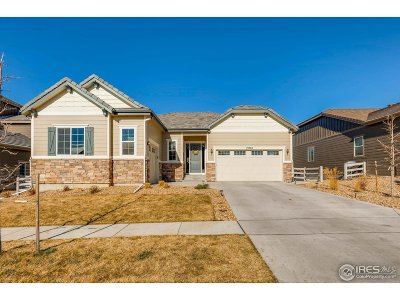 Broomfield County Single Family Home For Sale: 15963 Maroon Bells Dr