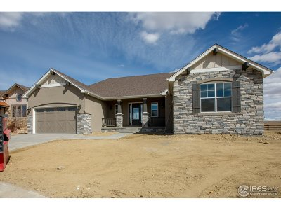 Larimer County Single Family Home For Sale: 934 Skipping Stone Ct