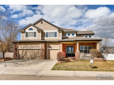 Longmont Single Family Home For Sale: 3819 Florentine Cir