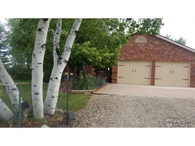 Loveland Single Family Home For Sale: 3204 Canter Ln