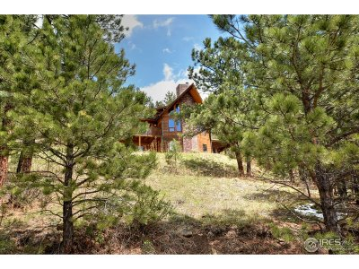 Loveland Single Family Home For Sale: 1884 Saddle Notch Rd