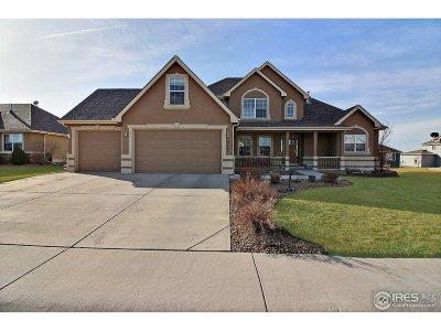 Eaton Single Family Home For Sale: 1376 Plains Ct