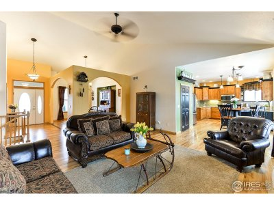 Loveland Single Family Home For Sale: 4845 Coffeetree Dr