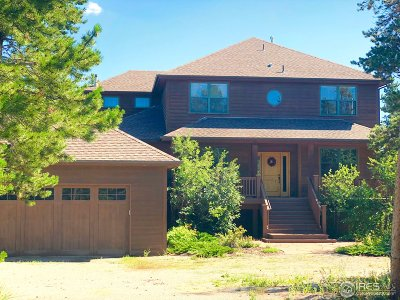 Nederland Single Family Home For Sale: 50 Shoshoni Way