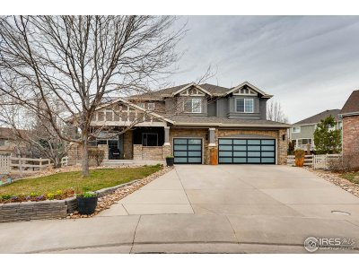 Broomfield Single Family Home For Sale: 3211 Madison Ct