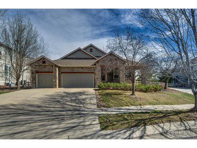 Broomfield Single Family Home For Sale: 14190 Whitney Cir