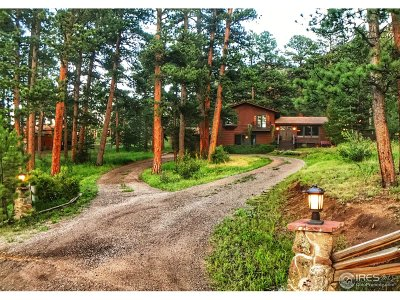 Estes Park Single Family Home For Sale: 510 Hondius Cir