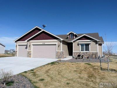Pierce Single Family Home For Sale