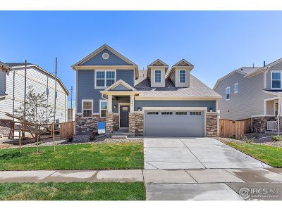 Boulder County Single Family Home For Sale: 141 Northrup Dr
