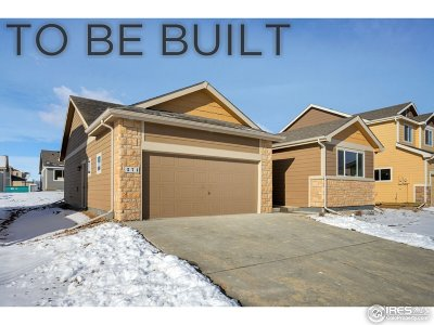 Greeley Single Family Home For Sale: 8823 16th St