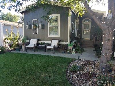 Longmont Single Family Home For Sale: 11076 Zion