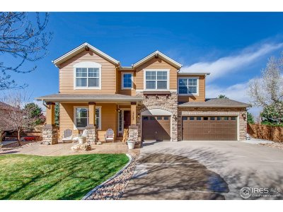 Broomfield Single Family Home For Sale: 2565 Bay Point Ln