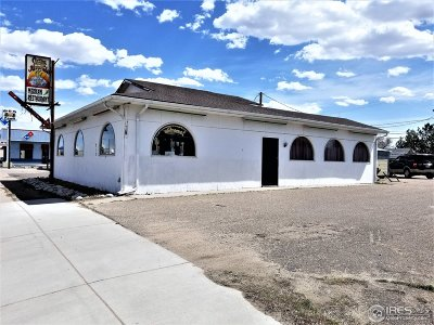 Commercial For Sale: 715 W Main St