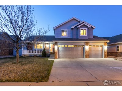 Loveland Single Family Home For Sale: 1529 Homeland St