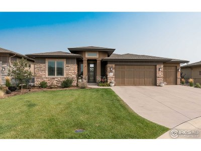 Larimer County Single Family Home For Sale: 6924 Water View Ct