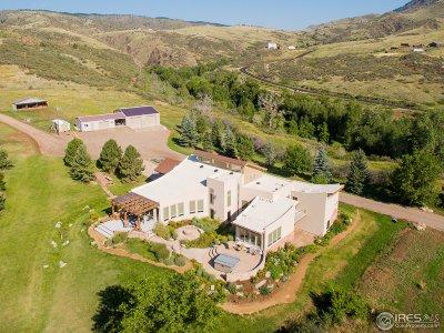 Single Family Home For Sale: 13185 Buckhorn Rd