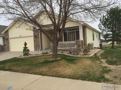 Windsor Single Family Home For Sale: 2146 River West Dr