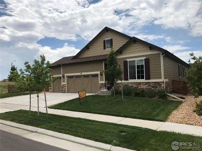 Erie Single Family Home For Sale: 46 Sun Up Cir