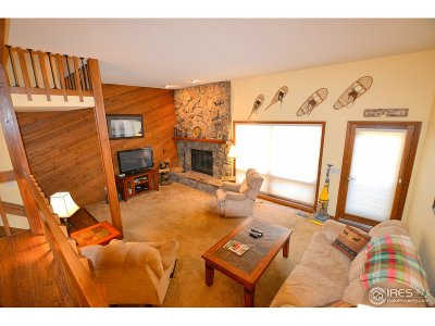 Estes Park CO Condo/Townhouse For Sale: $474,900