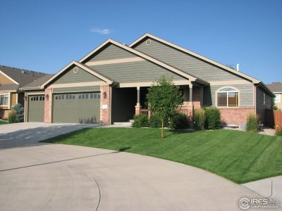 Loveland Single Family Home For Sale: 4690 Georgetown Dr